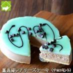チーズケーキ 取り寄せ 送料無料 富良野 レアチーズケーキ(チョコミント)
