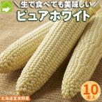 とうもろこし ピュアホワイト 北海道富良野産 Lから2L込 10本入り 送料無料