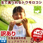 北海道富良野産とうもろこし「(訳あり)ピュアホワイト」(Lサイズ/5本入り)