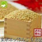 北海道産 【玄米】 ふっくりんこ 5kg 【送料無料】