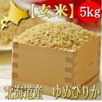 玄米 ゆめぴりか 5kg 令和元年産 北海道産 送料無料