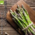 アスパラガス グリーンアスパラ 北海道 富良野産 ハウス栽培 Lサイズ 500g  送料無料