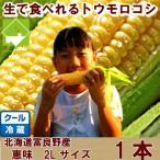 とうもろこし 恵味 2Lサイズ 1本入り 北海道富良野産