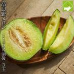 メロン 北海道 富良野メロン 青肉 秀品 2Lサイズ 1.4kg 3玉入り 送料無料 別途送料が発生する地域あり フルーツ