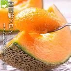 メロン マスクメロン 北海道富良野産 赤肉メロン 秀品 2Lサイズ 2玉入り 送料無料