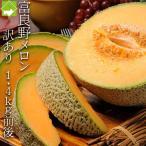 メロン 富良野メロン 北海道富良野産 赤肉 訳あり 1.4kg 1玉入り 送料無料