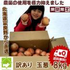 たまねぎ 訳あり 10kg 送料無料 北海道富良野産