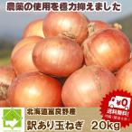 たまねぎ 訳あり20kg 送料無料 北海道富良野産