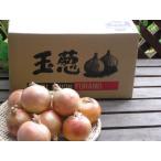 たまねぎ 北海道富良野産 玉ねぎ 秀品 Lサイズ 15玉 約3kg 送料無料
