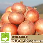 たまねぎ 北海道富良野産  SからLサイズ込 4.5kg 送料無料