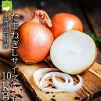 たまねぎ 北海道富良野産  Lサイズ 10kg 送料無料