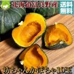 かぼちゃ 北海道富良野産 坊ちゃんかぼちゃ 10玉入り 送料無料