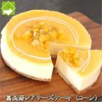 チーズケーキ 富良野 レアチーズケーキ(コーン) 送料無料