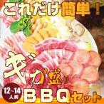 送料無料 バーベキュー ギガ盛りセット 野菜付 12〜14人前
