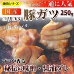国産 ガツ 豚 がつ ホルモン 250g 胃袋 焼肉用 焼肉 BBQ BBQ バーベキュー 秘伝 タレ漬け 焼くだけ