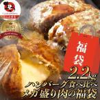 福袋 ハンバーグ 食べ比べ 食品 豪華 メガ盛り 2.2kg 2種セット (プレーン100g×12個、チーズイン100g×10個) 冷凍 惣菜 お弁当 業務用