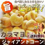 送料無料 メール便 カラマヨ ジャイ コーン (40g) 辛子 マヨネーズ 味 ジャイアントコーン 豆 ナッツ 小腹