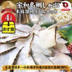 魚 鯛 しゃぶしゃぶセット 4人前 鯛しゃぶ たい 宇和島 愛媛 宇和海 讃岐うどん 鍋 母の日 ギフト 2021  送料無料