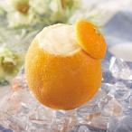業務用 オレンジ シャーベット ラウンド1個