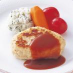 冷凍食品 業務用 HGやわらかバーグ 60g×10個    お弁