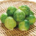 冷凍食品 業務用 芽キャベツ 500g (約40〜50個前後) 煮込み 付け合せ きゃべつ 野菜 コロナ 支援 おこもり 応援