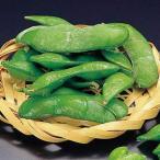 冷凍食品 業務用 茶豆 (塩味) 500g (約180〜200粒入) 19214 弁当 ちゃまめ 冷凍 まめ 豆 マメ 業務用