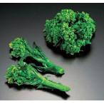 冷凍食品 業務用 国産 冷凍菜の花 500g <2月-4月>  お弁当 なのはな ナノハナ