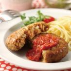 冷凍食品 業務用 新豆腐野菜ハンバーグ 60g×25個入 19552 弁当 弁当 カフェ ランチ 定食 肉料理