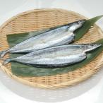 グルメ 冷凍食品 業務用 さんま開き約70g×2枚入  弁当 さんま サンマ 秋刀魚 無添加 2020年新商品:魚介類