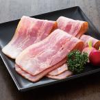 冷凍食品 業務用 冷凍ベーコンスライス 500g 21994 弁当 豚ばら肉 燻煙