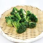 グルメ 冷凍食品 業務用 冷凍ブロッコリー500g 弁当 緑黄色野菜 定番人気 自然 施設向け食材 冷凍野菜 老人ホーム 高齢者向け