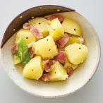 冷凍食品 業務用 ジャーマンポテト 500g 22203 弁当 じゃがいも 玉葱 ベーコン おつまみ