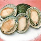 冷凍食品 業務用 あわび (翡翠の瞳) グリーンリップ種 1kg 22442 あわび 急速凍結 シーフード 海鮮