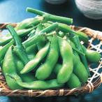 冷凍食品 業務用 枝付き枝豆 1kg <4月末-8月> エダマメ つまみ 和食小鉢 惣菜 枝豆