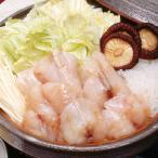 冷凍食品 業務用 ふぐぶつ切り(鍋用) 500g(約20個入)  販売期間 9-2月 弁当 河豚 フグ 魚 秋食材 原材料 鍋食材 海鮮