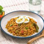 冷凍食品 業務用 ドライカレー 1食270g    お弁当  カレー カレーライス レトルト インド料理 シチュー ご飯 洋食