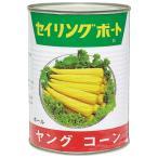 業務用 ヤングコーン缶 3号缶 8378
