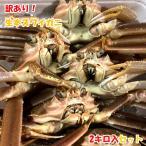 訳あり本ズワイガニ 2キロ入 越後新潟県村上市山北寝屋漁港から産地直送でお取り寄せ ワケアリ 蟹 かに 鍋 しゃぶしゃぶ 送料無料 水産物応援商品