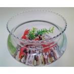 金魚鉢/金魚/可愛い金魚/癒し系/ガラス製金魚鉢(大)にエサのいらない金魚セット/贈り物/プレゼント/うつわの翔山