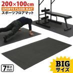 KaRaDaStyle トレーニング フロアマット 体操 マット ビッグサイズ 200×100cm