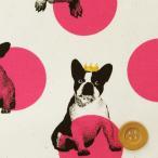 ドット ブルドッグ 犬 生地 かわいい Trefle トレフル『水玉フレンチブルドッグ オックス生地/オフホワイト&ショッキングピンク』
