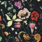(サンドウ限定復刻色)リバティプリント タナローン生地 『Floral Eve フローラル・イヴ』ブラック(3633189)