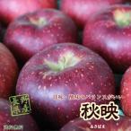 ≪今が旬≫信州産 秋映 約3kg(7-9玉)この時期食べるりんごならこれで決まりです