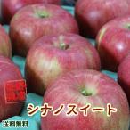 りんご 送料無料 長野県産 シナノスイート 約5kg