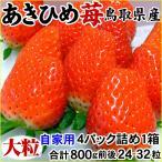【訳あり☆あきひめ苺(章姫)いちご】800g前後(24-32粒入)送料無料!〔わかば農法〕洗わずに食べられるイチゴ