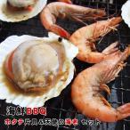 (バーベキュー BBQセット)海鮮バーベキュー(串エビ&ホタテ貝:10人前)(送料無料)セット[串エビ×10本&ホタテ片貝10個セット][冷凍]