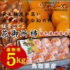 柿子 - 花御所柿[進物用](L-4L混じり)5kg〔送料無料〕〔鳥取県特産品〕[常温][収穫があり次第出荷][早期予約]