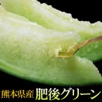 肥後グリーン 大玉メロン 2玉入(合計約4kg)[常温][送料無料]