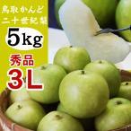 かんど地区産限定 二十世紀梨 秀品:進物用  5kgセット 3Lサイズ:14玉入 送料無料  鳥取県産 20世紀梨