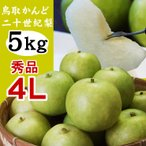 かんど地区産限定 二十世紀梨 秀品:進物用  5kgセット 4Lサイズ:12玉入 送料無料 鳥取県産 20世紀梨
